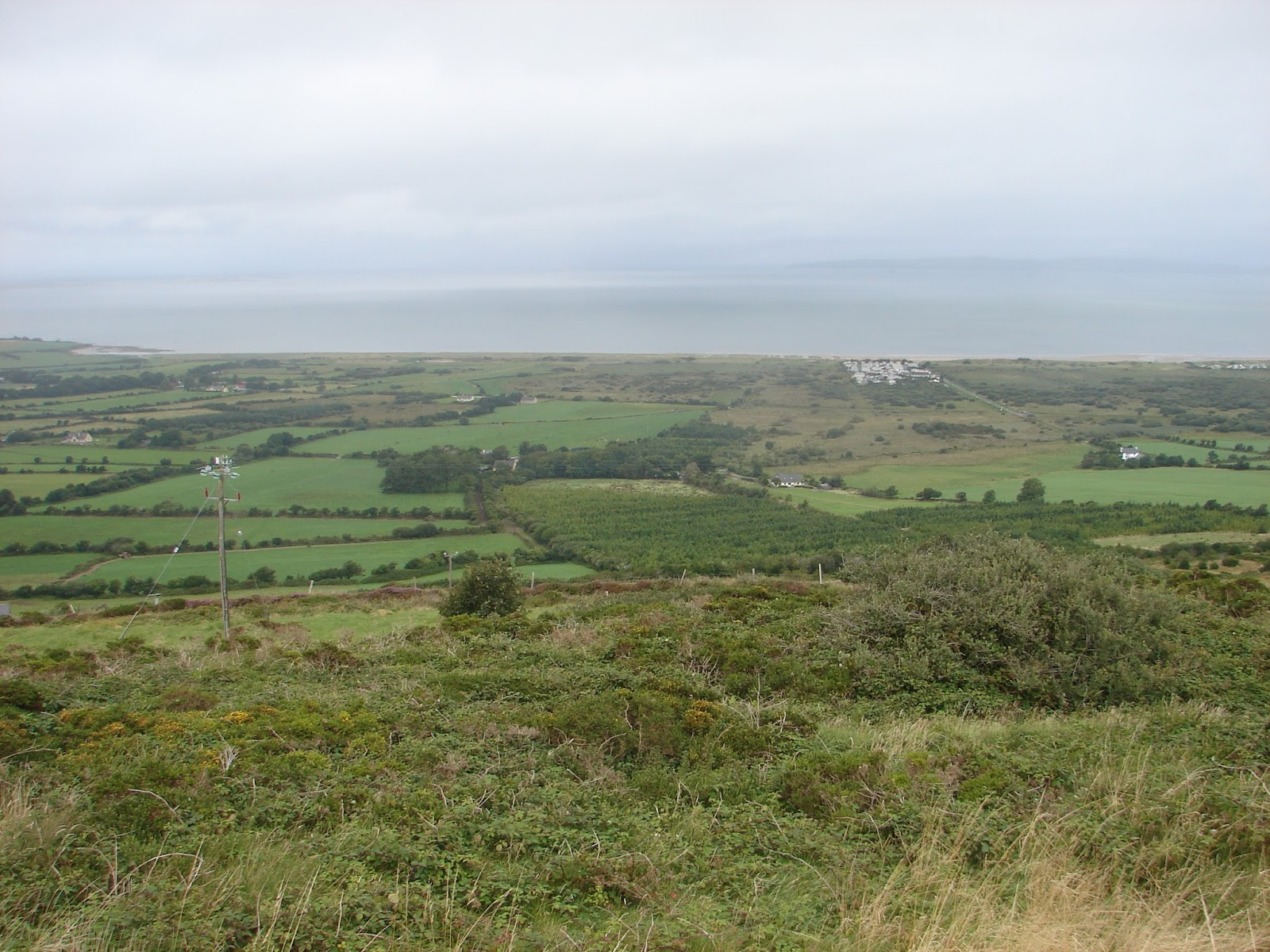 DSC05022 Tralee Bay (24-8-13)