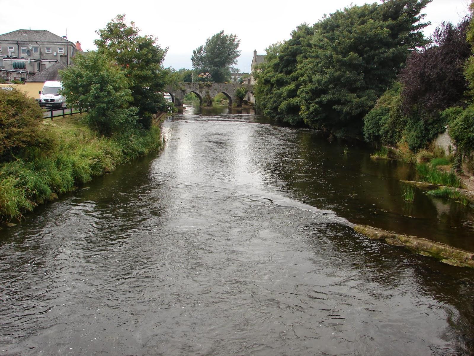 DSC05167 río Boinne en Trim (26-8-2013)
