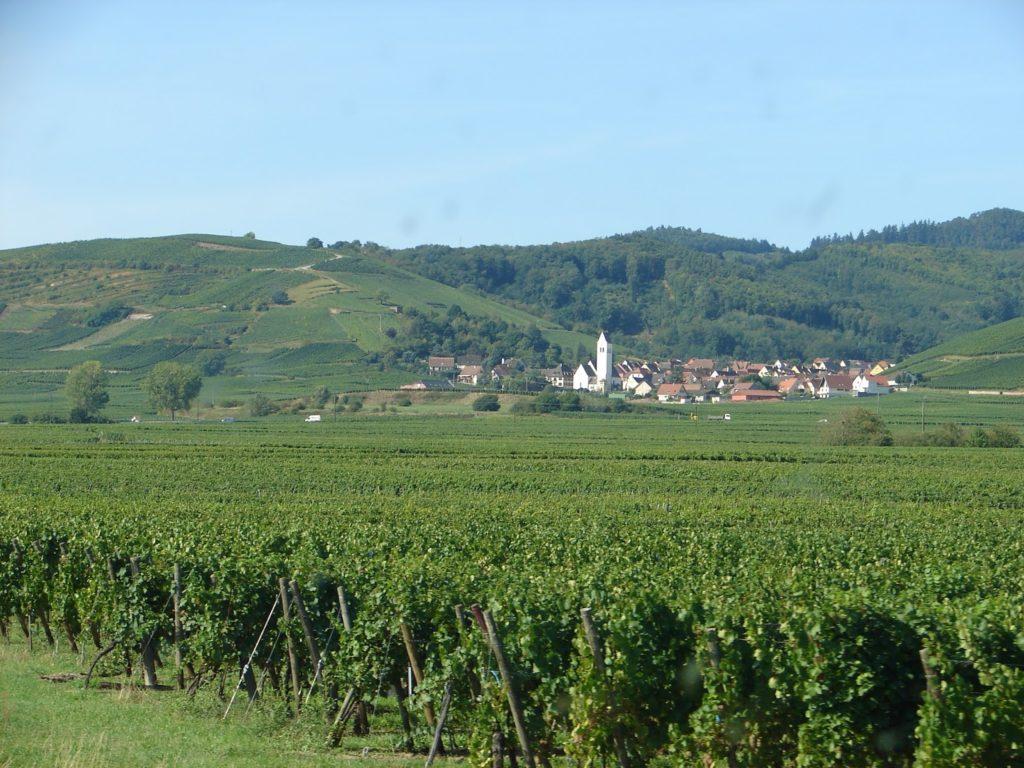 Toda ordenadiño na paisaxe agraria alsaciana: os viñedos no val, as vilas nos outeiros ou a pé deles (foto XMLS)