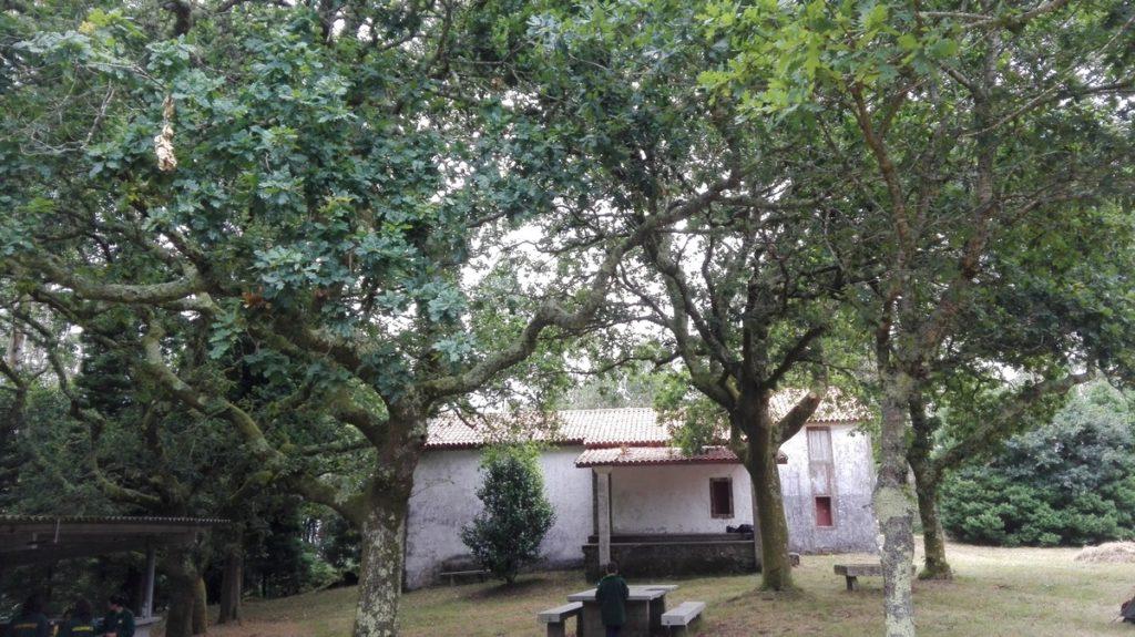 A_capela_de_san_Roque_do_Monte_no_medio_dunha_pequena_carballeira