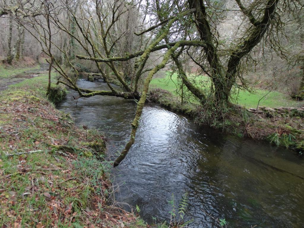 12. O río do Sisto antes da ponte do seu nome (XMLS)